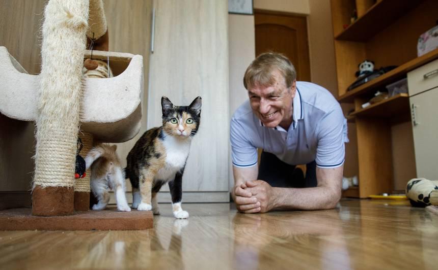 Ivara Kalviņa <strong>kaķu kolonijas</strong>