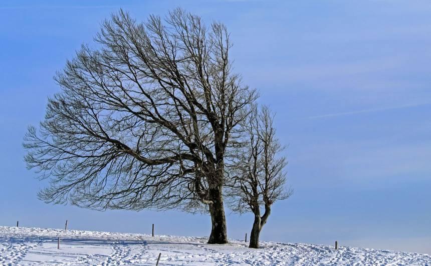 Nedēļas nogalē būs siltāks, <strong>gaidāms arī sniegs un brāzmains vējš</strong>
