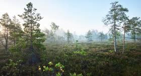 <strong>Starptautiskajā Mitrāju dienā aicina pārgājienā</strong> pa Ķemeru Nacionālā parka mitrājiem