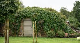 Zaļais pagrabs jeb <strong>Kā pagrabu apaudzēt ar zālienu un košumaugiem</strong>