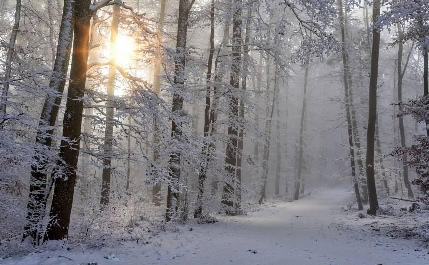Tuvākajā diennaktī <strong>daudzviet Latvijā snigs</strong>
