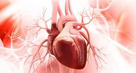 Lietuvā no Latvijas <strong>nogādāta sirds transplantēšanai</strong>