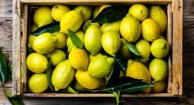 10 fakti par <strong>C vitamīna bumbu — citronu</strong>