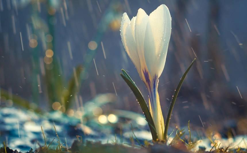 Trešdien visā Latvijā <strong>gaidāms lietus</strong>