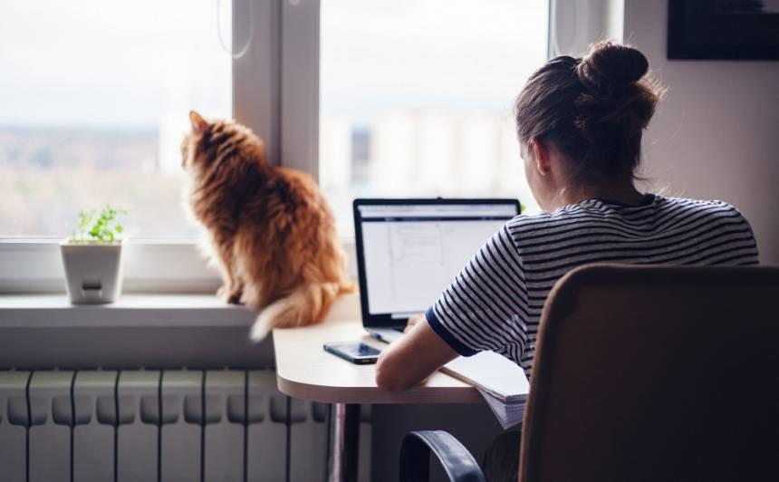 Citādais darbs no mājām: <strong>Kā organizēt darbu mājās?</strong>