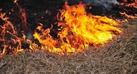 <strong>Kūlas ugunsgrēku skaits</strong> turpina pieaugt