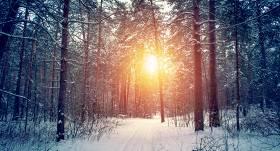 Sestdien gaidāms sals, <strong>vietām stipri snigs un putinās</strong>
