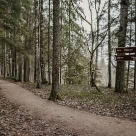 Sigulda aicina doties pastaigās <strong>pa mazāk zināmiem maršrutiem</strong>