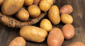 <strong>Šīs kartupeļu šķirnes izaugs ar garantiju</strong> un bumbuļiem būs laba garša!