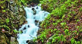 5 jautājumi <strong>par avota ūdeni</strong>