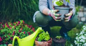 Septiņi laimīga dārznieka likumi
