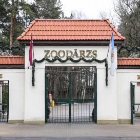 Zooloģiskais dārzs karantīnā — <strong>kā pārmaiņas skārušas dzīvniekus?</strong>