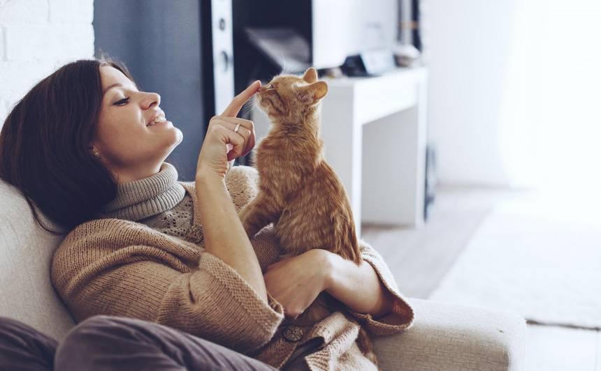 10 pazīmes, kas var liecināt        —        <strong>esi traka kaķu sieviete</strong>