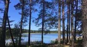 Ummja ezerā Piejūras dabas parkā <strong>peldēties nedrīkstēs līdz vasaras beigām</strong>