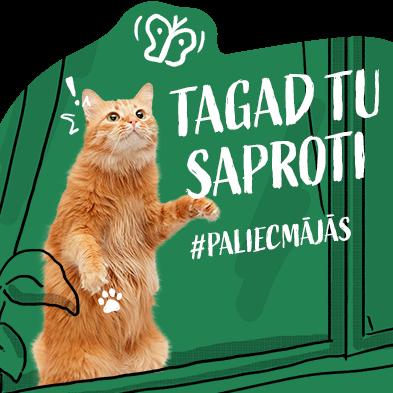Dzīvnieku patversme <em>Labās mājas</em> kampaņā <em>Tagad tu saproti</em> <strong>lūdz atbalstu pandēmijas laikā</strong>