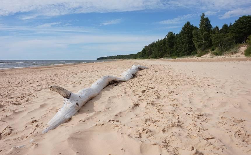<strong>Latvijas vasara ir klāt</strong> — Ventspilī +12, bet Latgalē un Vidzemē +30!