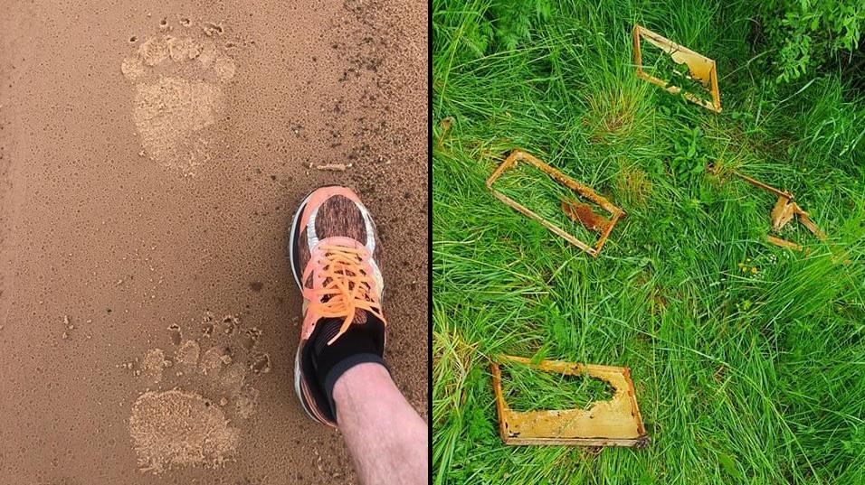 FOTO: <strong>Netālu no Tūjas pludmales manīti lāča pēdu nospiedumi,</strong> ķepainis izpostījis bišu saimes