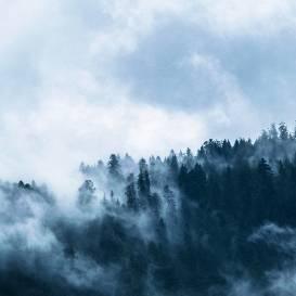 Gaisa temperatūra naktī daudzviet <strong>noslīdēs zem +10 grādiem</strong>
