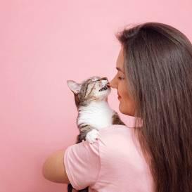 Kāpēc kaķi <strong>laiza savus saimniekus?</strong>