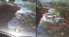 VIDEO: BMW īpašnieku pārsteidz <strong>cauri motora pārsegam izdūrusies detaļa</strong>