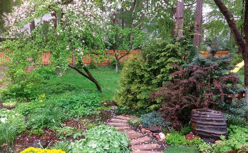 Jo lielāka augu dažādība dārzā, jo vairāk dažādu citu sīkbūtņu tur būs.