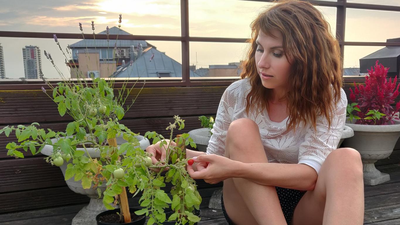 «Šobrīd no visiem tomātiem nogatavojies un gatavs fotografēties ir tikai viens, tieši sīkākais. Bet lepnums tāpat milzīgs,» smaida Sanda.