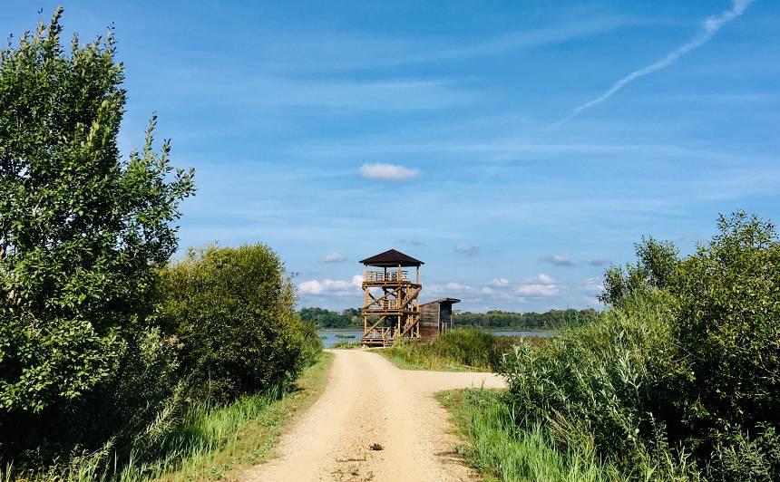 Durbes putnu vērošanas tornis