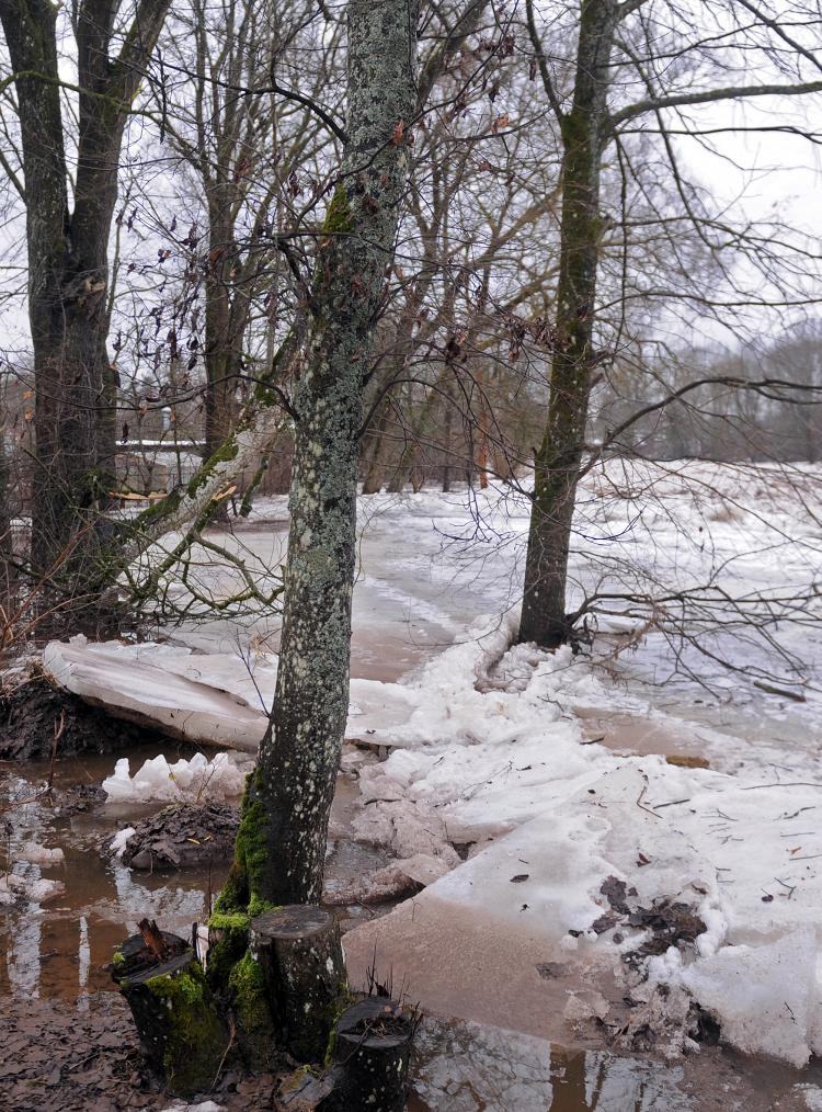 Ledus un ūdens varai pretojoties