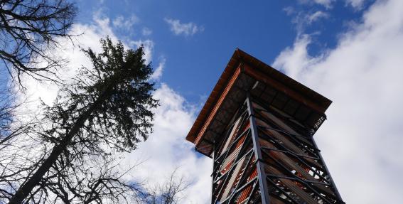 TESTS: Cik labi pazīsti Latvijas skatu torņus?