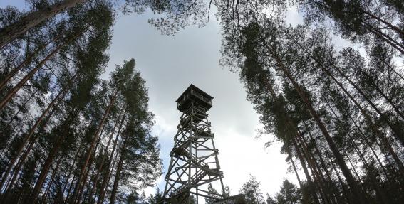 Paskaties uz Latviju virs koku galotnēm!