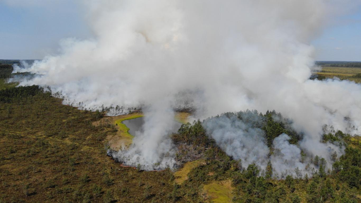 Ugunsgrēks īpaši aizsargājamā dabas teritorijā Lielais un Pemmes purvs 2021. gadā.